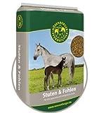 Nösenberger Stuten-Fohlen 25 kg