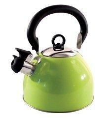 Boquilla de silbato de acero inoxidable ligero de 2,5 l con boquilla tradicional para estufa Hobo - verde - por Guilty Gadgets