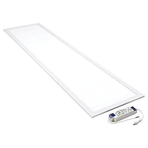 Biard® - Plafonnier LED - Dalle Lumineuse 30x120cm - Panneau Basse Consommation 40W - Blanc Froid