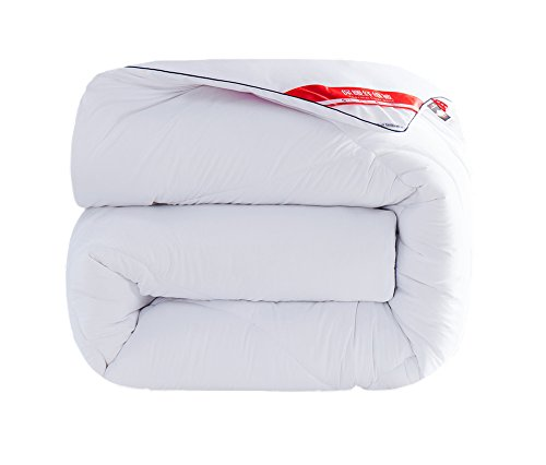 Steppdecke, Winter dicker warm halten Sterne Hotels Single Double Light Soft Home Textilien Studentenwohnheim Feder Federdecke 200 × 230cm ( größe : 220*240cm4kg )