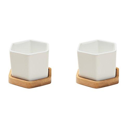 VORCOOL 2 STÜCKE Weiß Keramik Topf Zeitgenössische Hexagonal Design Sukkulente Topf für Innen Dekorative mit Bambus Tablett