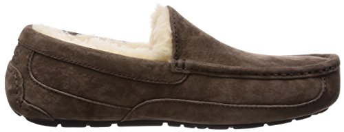 Ugg Ascot 5775, Chaussons homme Marron-TR-KY.12