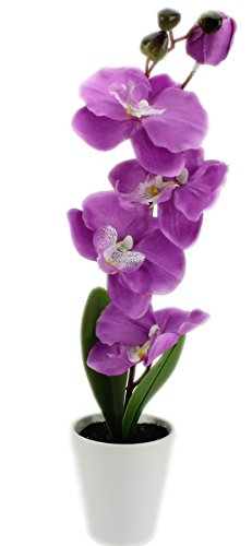 GYD Deko – Orchideen Kunstpflanzen Rispen mit Topf ca 38cm