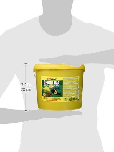 Tropical Super Spirulina Forte Flockenfutter mit 36% Spirulina (Platensis) Anteil, 1er Pack (1 x 5 l) - 3