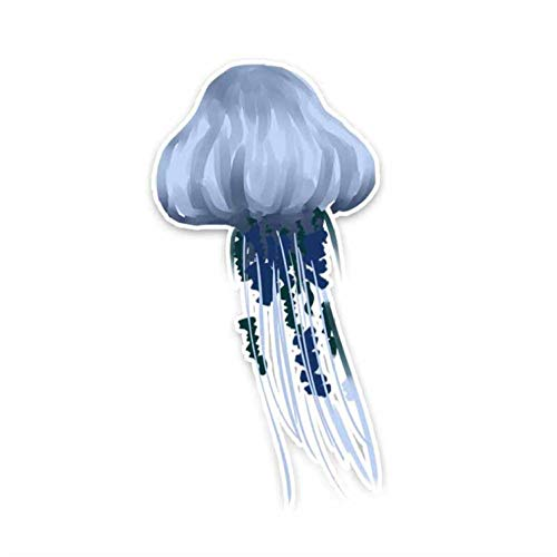 XXYMCB 7,5 cm * 14,7 cm Hermoso organismo Marino Medusas