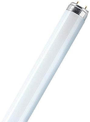 Osram Leuchtstoffröhren 15 Watt, 830 lichtfarbe, L 15 W/830 von Osram - Lampenhans.de
