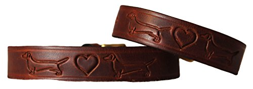 Dogs & Co. Signature Hundehalsband Dackel Leder. Braun. 'Standard' Länge, Hals Größen 27,9cm-33cm/28-35cm - Stück Verfügbar, Separat Erhältlich