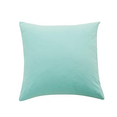 zug 60x60cm/50x50cm/40x40cm, Kissenhülle Kopfkissenbezug Einfarbig Mikrofaser Korallenvlies Super Weich Pillowcase für Sofa Bed Home Dekoration (40x40cm, D) ()