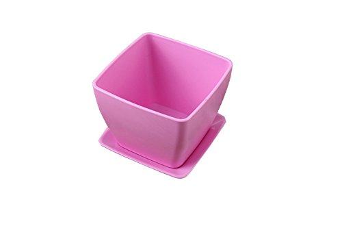 Hosaire 1X Vaso piazza di plastica per
