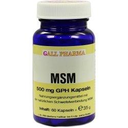 MSM 500 mg GPH Kapseln 60 St Kapseln