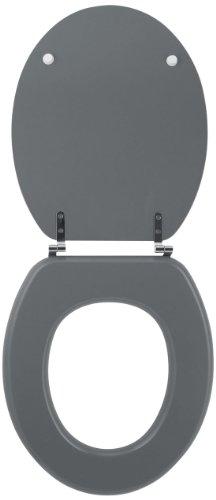 Wirquin 20717953 Colors Line - Tapa de inodoro, color gris claro