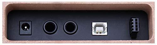 Classic Cantabile DP-50 SM E-Piano (Digitalpiano mit Hammermechanik, 88 Tasten, 2 Anschlüsse für Kopfhörer, USB, LED, 3 Pedale, Piano für Anfänger) schwarz matt - 8