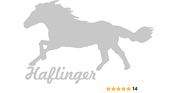 2x Auto Aufkleber Haflinger Pferd 2x Car Sticker Konturgeschnitten Ca 11x7 Cm Silber Auto