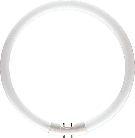 Leuchtstofflampe TL5-C PRO 22 Watt 830 - Philips 22W warmweiß (14x220 mm)