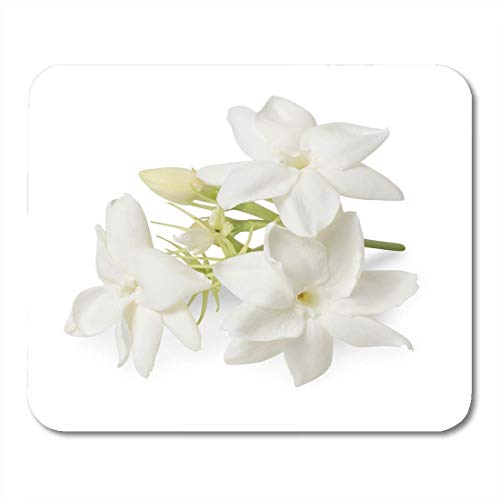 Deglogse Gaming-Mauspad-Matte, Floral Green Gardenia Beautiful Jasmine Flower White with Clipping Path Leaf Group Mouse Pad,Desktop Computers Mouse Mats, -