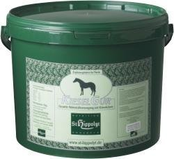 St. Hippolyt Kieselgur für Pferde 10 kg