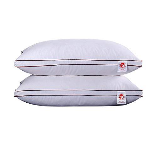 CGQAbajo almohada plumas ganso blanco abajo almohada