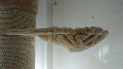 Katzenkratzbaum, Kratzbaum für Katzen, deckenhoch ,höhenverstellbar für Deckenhöhe 235 - 245cm, besonders dicke Sisalstämme 22cm Ø ,Super Amazon Promo, -