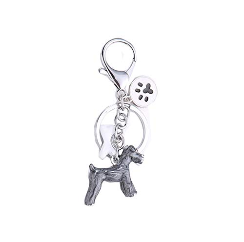 BbearT® - Llavero de Perro con identificación de Perro, Llavero de Metal...