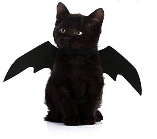 GZD Halloween-Kostüm für Hunde und Katzen, Fledermaus mit ()