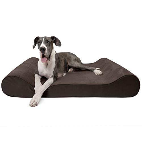 Furhaven Pet Dog Bed | Memory Foam Microvelvet Luxe Lounger Pet Bed for Dogs & Cats, Espresso, Giant