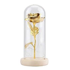 Duokon Luz LED de Flor de Rosa conservada con Cubierta de Vidrio y Base de Madera para el cumpleaños de Valentines'Day…