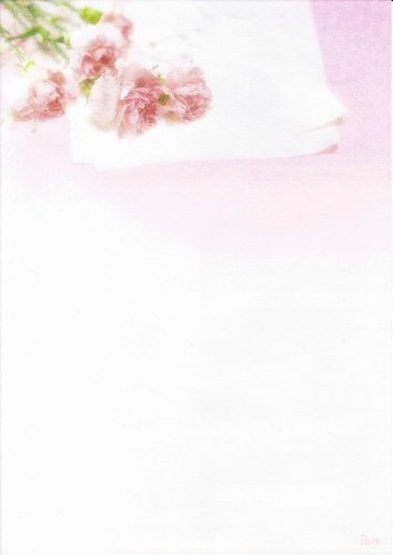 carnations-background-paper-a4-80gsm-packed-20-sheets