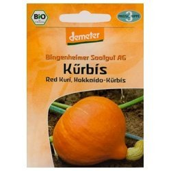 "Bingenheimer Saatgut Hokkaido-Kürbis ""Red Kuri"" (1 Stück 1 Stück) - Bio"
