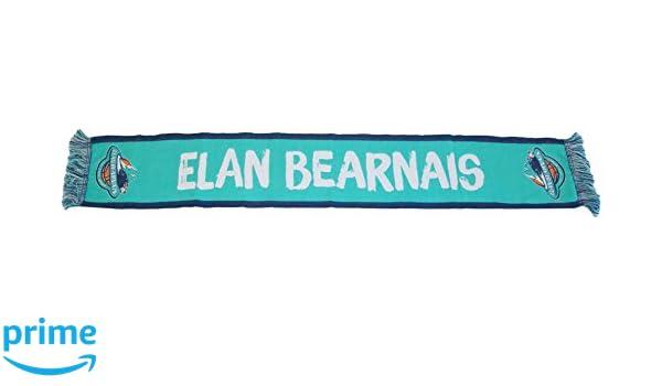 ea63904ac0f7 Elan Béarnais Echarpe Haute Definition 2017-2018 Supporter Mixte Adulte,  Vert, FR Fabricant   Taille Unique  Amazon.fr  Sports et Loisirs