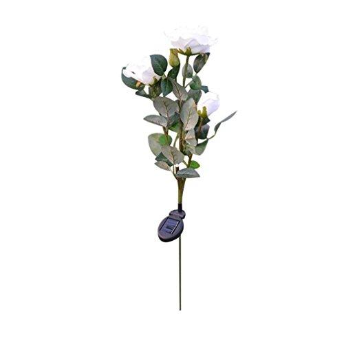 (Trada Weiße Rose Lichter, 3 Kopf Weiße Rose Blume Solar Licht LED Dekorative Outdoor Rasen Lampe Solar Lichter für Outdoor Garten Sommer Party Hochzeit Weihnachten Dekoration (Weiß))