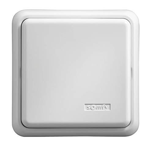 Somfy - Récepteur d'éclairage Intérieur, 500 W, 230 V Blanc