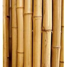 Cañas de bambú para sujetar hortalizas y otros ...