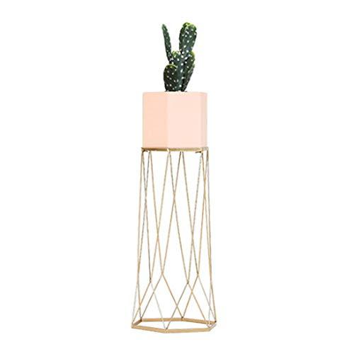 XiuHUa Iron Art Flower Stand Stehplatz Große Kapazität Topf Rack Innen Und Außen Balkon Wohnzimmer Multifunktions Grün Blumenstand drinnen und draußen (Color : Pink) -