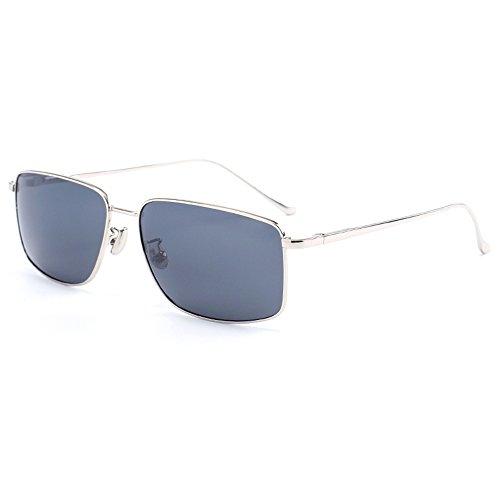 GYYTYJ SSSX Herren Sonnenbrille Gentleman Polarizer Driving Angeln Sonnenbrille Anti-UV-Brille (Farbe : Silber)