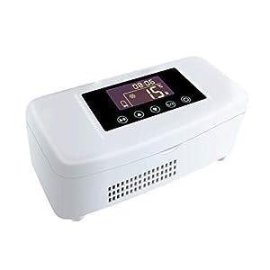 Unbekannt Insulin-Kühlbox Große Kapazität 2-25 Grad Thermostat Tragbare Auto Kühlschrank Mini Interferon Kleine Kühlschrank (19,8X9X8 cm (7,8X3,54X3,15 Zoll)
