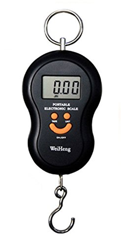45Kg Digital Kitchen Weighing Scale / Luggage Hanging Weight Scale + Temperature (Multicolor)