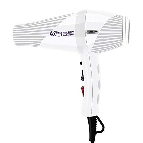 Shocly Haartrockner Profi-Ionen 2400 Watt Dry Care Advanced Haushalt Tragbar,White
