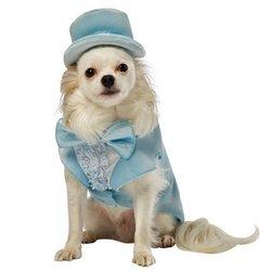L Dumm und dümmer Harry blauer Smoking Hunde-Kostüm (XL) (Dumme Kostüm)