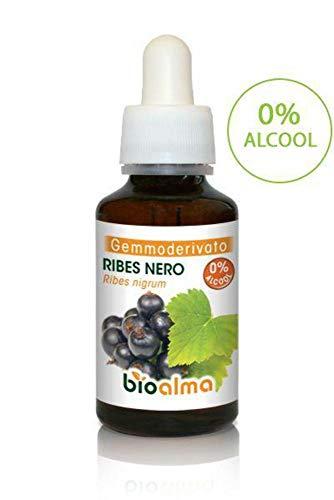 RIBES NERO (RIBES NIGRUM) GEMMODERIVATO ANALCOLICO BIOALMA – 60 ML. Favorisce il sostegno delle difese immunitarie. 100% naturale, senza zuccheri aggiunti. Ideale anche per le donne in gravidanza