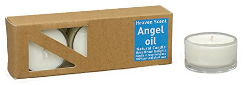 3 beduftete Natur Teelichter ANGEL OIL aus Pflanzenwachs in recycelten Glashüllen, beduftet mit hochwertigen Parfüm-Ölen -