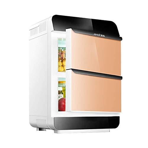 Ytt [ZAA] 25-l-Dual-Core-Kühlschrank for Kühl- und Gefriergeräte for PKWs (Color : Gold) -