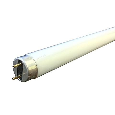 F70W 6FT T8 Fluorescent tube 865 - daylight - branded - sylvania - philips - ge