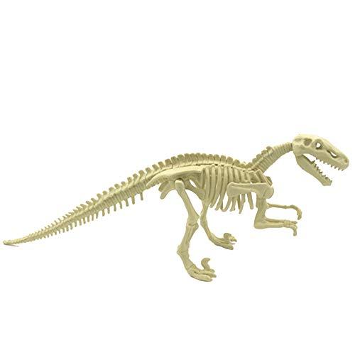 MICHAELA Dinosaurier-Ausgrabung Kits Verschiedene Dinosaurier-Fossil-Skelett Spielzeug Dig und Discover Triceratops Ausgraben Stuffer Bildung Geschenke für Kinder Dinosaurier-Greifer ()