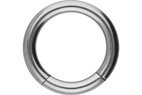 PIERCINGLINE Titan Segmentring | silberfarben | Piercing ✔ Ring ✔ Septum ✔ Helix ✔ | Größenauswahl