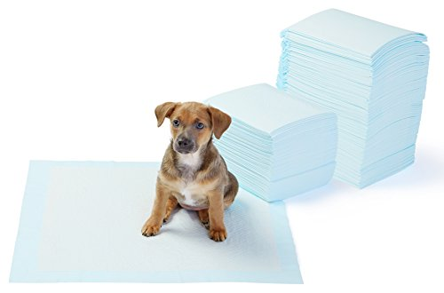 AmazonBasics Puppy Pads Trainingsunterlagen für Welpen, Standardgröße, 150 Stück