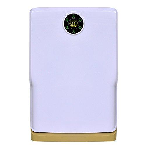 lionwell-multistrato-filtri-ionico-di-purificazione-per-ben-rimuovere-la-polvere-e-allergeni-k02-gia