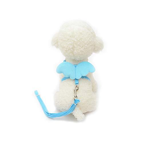 Trifycore Haustier-Hundeleine Harness Einstellbare Welpen Kragen führt Set Weste Band mit Angel Wings für kleine Hunde Kitten Größe L (blau) Kleintierbedarf
