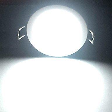 LPAN Zdm 10 W Dimmbar Waterproofip 65 900 950 Lm Silber Roundled Downlight Deckenleuchte Halb Im Freien Kalt Weiß Warm Whiteac 220V Kalt Weiß