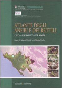 Atlante degli anfibi e rettili della provincia di Roma. Ediz. illustrata (Opere varie)