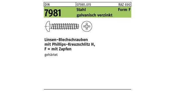 verzinkt farblos 10 St/ück Reidl Linsenkopf Blechschrauben 3,5 x 6,5 mm DIN 7981 Stahl galv